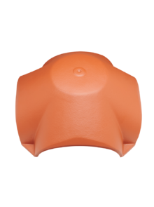 4-axis hip cap F1v & F16